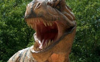 Colchester Golf Club invests £1m in dinosaur themed attraction